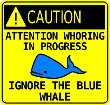 san_francisco_blue_whale