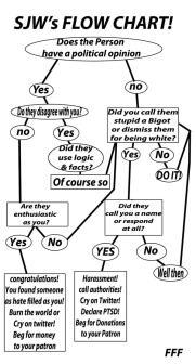 sjw's flow chart