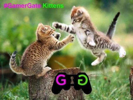 gamergate kittens