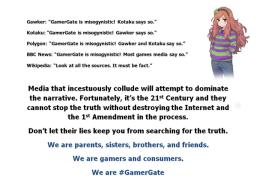 we are gamergate
