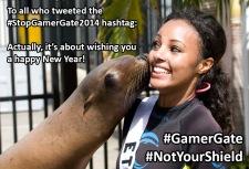 #StopGamerGate2014